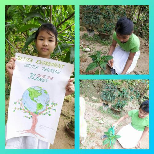 Virtual celebration of World Environment Day by Class 5